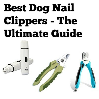 dog nail clippers ultimate guide