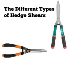 best hedge shears different types