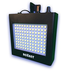 roxant strobe light full